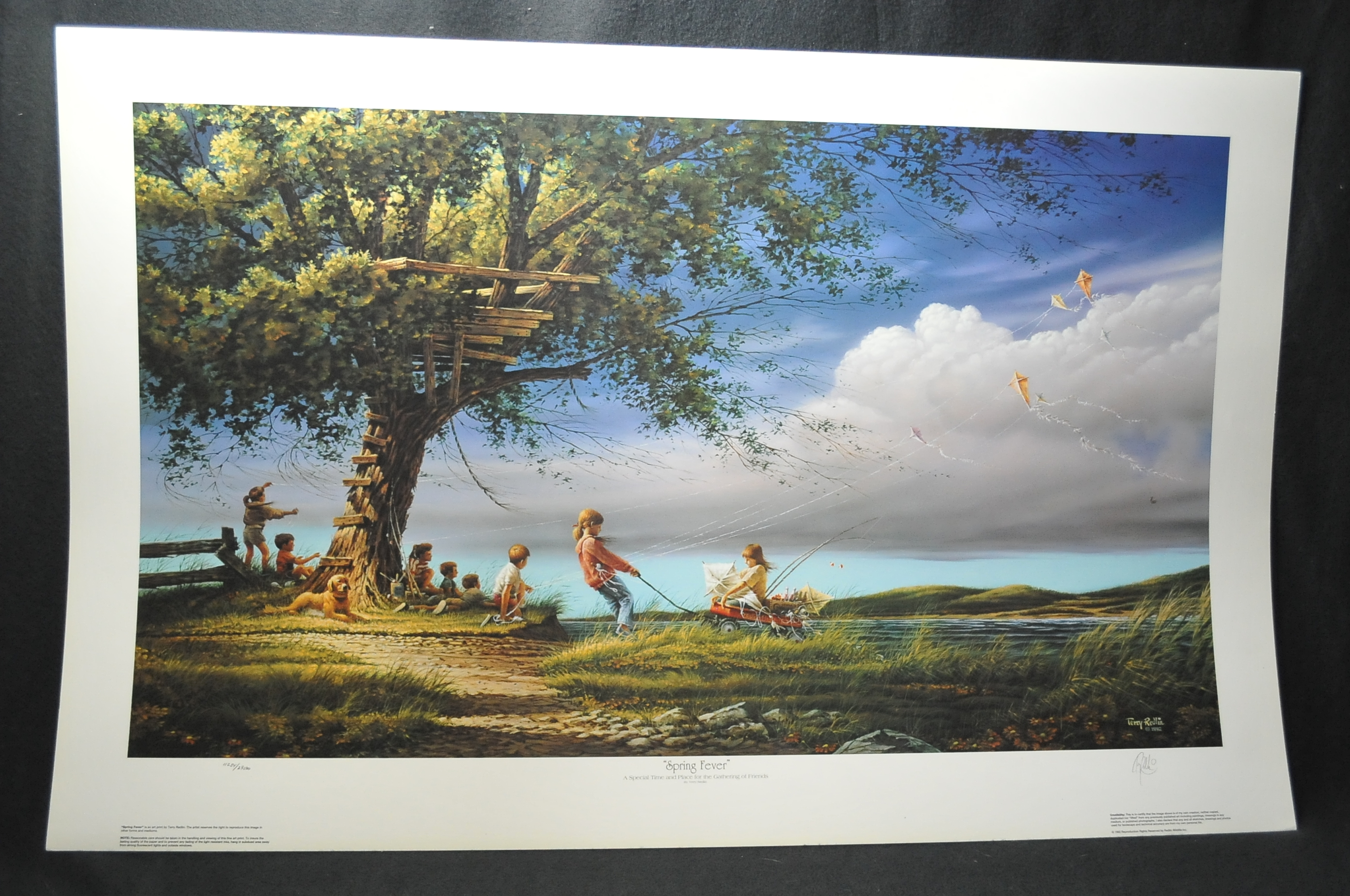 Terry Redlin SPRING FEVER Artist Signed Numbered Art Print Sale